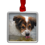 Adorable Australian Shepherd Metal Ornament