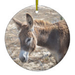 Adorable Donkey Ceramic Ornament