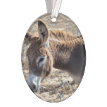 Adorable Donkey Ornament