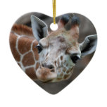 Adorable Giraffe Ornament