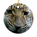 Amur Leopard Ornaments