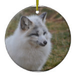 Beautiful White Swift Fox Ceramic Ornament