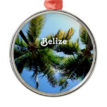Belize Palm Trees Metal Ornament