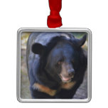 Black Spectacled Bear Metal Ornament