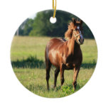 Chestnut Horse Standing Ornament