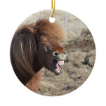 Funny Horse Making a Silly Face Ceramic Ornament