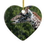 Giraffe Eating Ornament