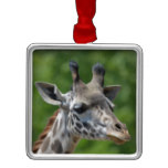 Great Giraffe Metal Ornament
