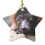 Resting Red Ruffed Lemur Ceramic Ornament