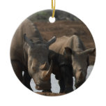 Rlack Rhinos Ornament