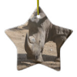 Rutting Rhino Ceramic Ornament
