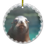 Sea Lion with Whiskers Ceramic Ornament