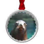 Sea Lion with Whiskers Metal Ornament