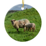 Sheep Family Ceramic Ornament