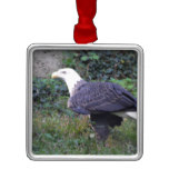 Standing American Bald Eagle Metal Ornament