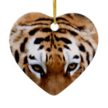 Tiger Markings  Ornament